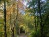Barneführer Holz, Foto: Hendrik Brase