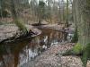 Hunte - Heide - Hügelgräber, Foto: Michael Rickwärtz
