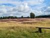 Hunte - Heide - Hügelgräber, Foto: Walburga Harms