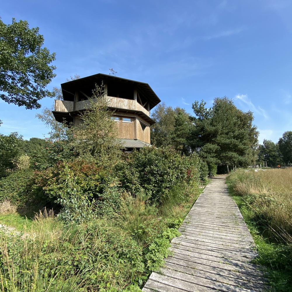 Aussichtsturm beim Haus im Moor. Foto: D. Stania, Gemeinde Goldenstedt
