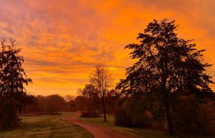 Walburga Harms - Twuster Padd - Sonnenuntergang